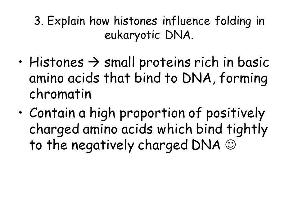 3. Explain how histones influence folding in eukaryotic DNA.