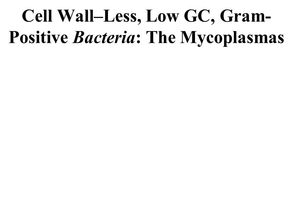 Cell Wall–Less, Low GC, Gram- Positive Bacteria: The Mycoplasmas