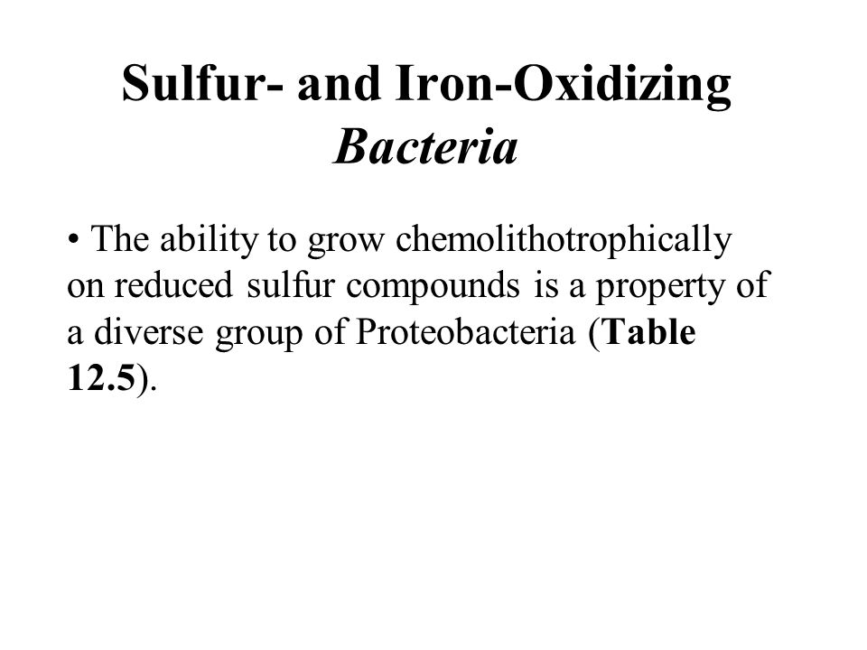 Sulfur- and Iron-Oxidizing Bacteria The ability to grow chemolithotrophically on reduced sulfur compounds is a property of a diverse group of Proteobacteria (Table 12.5).