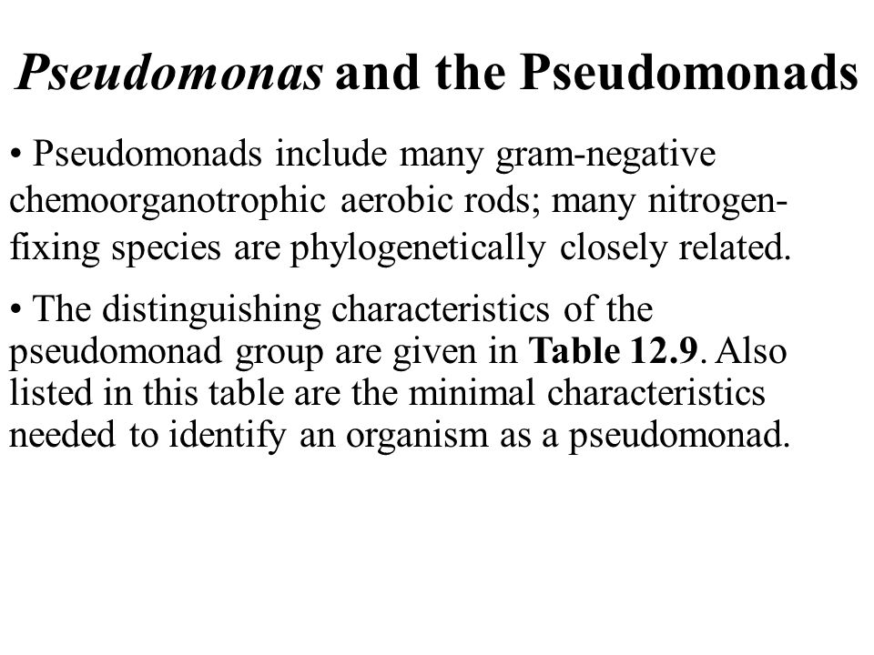Pseudomonas and the Pseudomonads Pseudomonads include many gram-negative chemoorganotrophic aerobic rods; many nitrogen- fixing species are phylogenetically closely related.