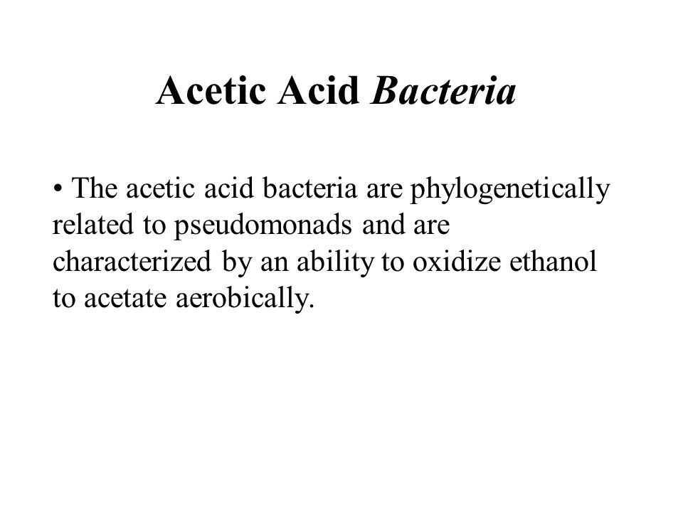 Acetic Acid Bacteria The acetic acid bacteria are phylogenetically related to pseudomonads and are characterized by an ability to oxidize ethanol to acetate aerobically.