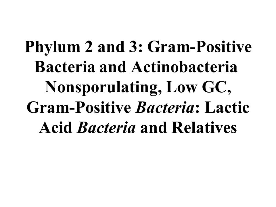 Phylum 2 and 3: Gram-Positive Bacteria and Actinobacteria Nonsporulating, Low GC, Gram-Positive Bacteria: Lactic Acid Bacteria and Relatives