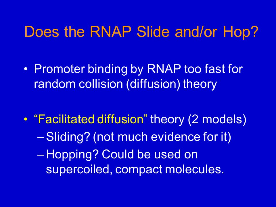 Does the RNAP Slide and/or Hop.