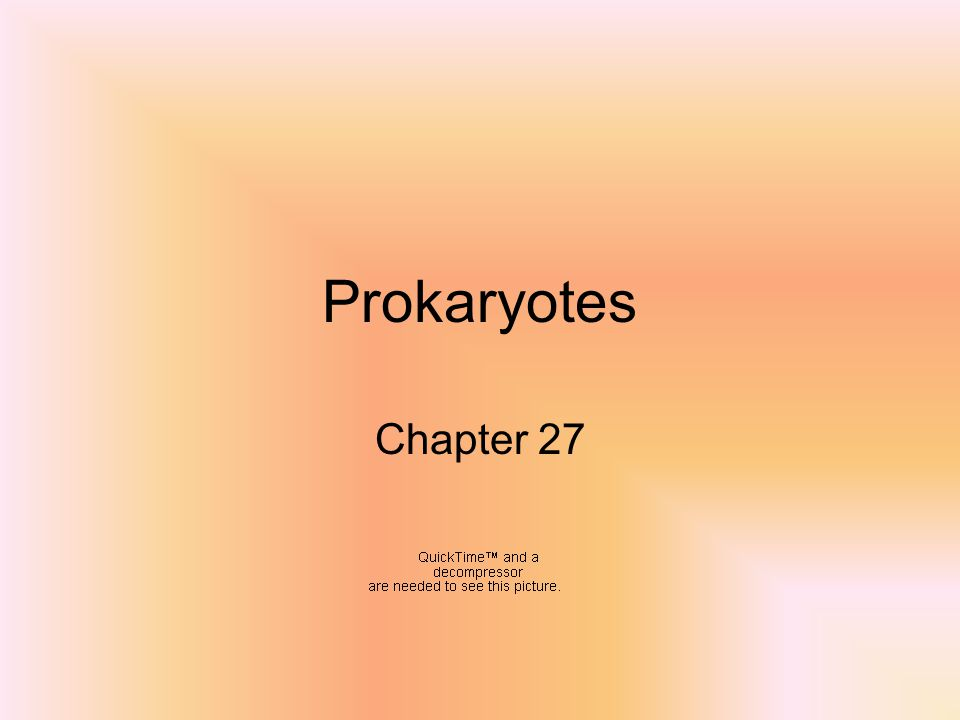 Prokaryotes Chapter 27
