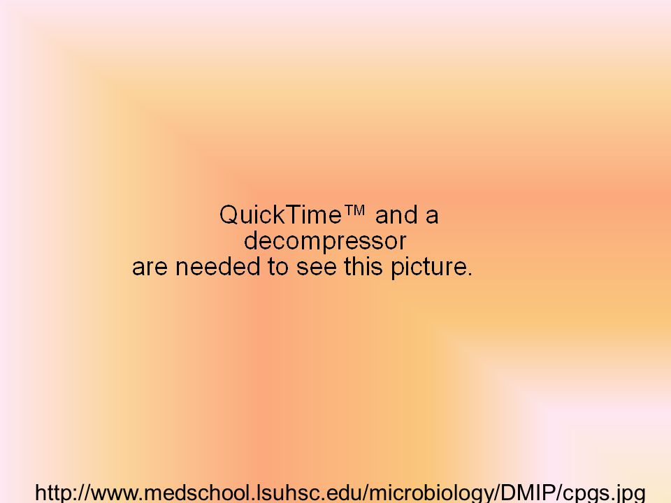 http://www.medschool.lsuhsc.edu/microbiology/DMIP/cpgs.jpg