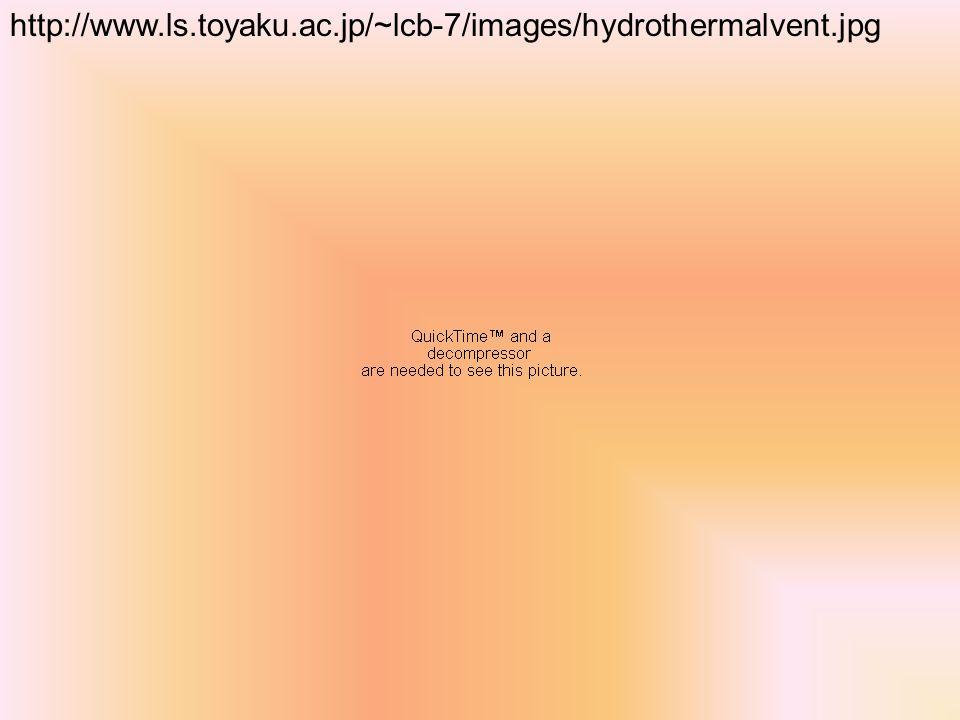 http://www.ls.toyaku.ac.jp/~lcb-7/images/hydrothermalvent.jpg