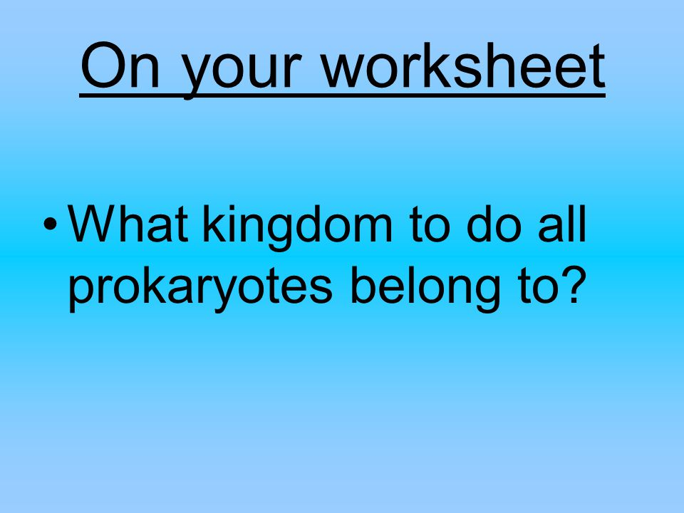 On your worksheet What kingdom to do all prokaryotes belong to