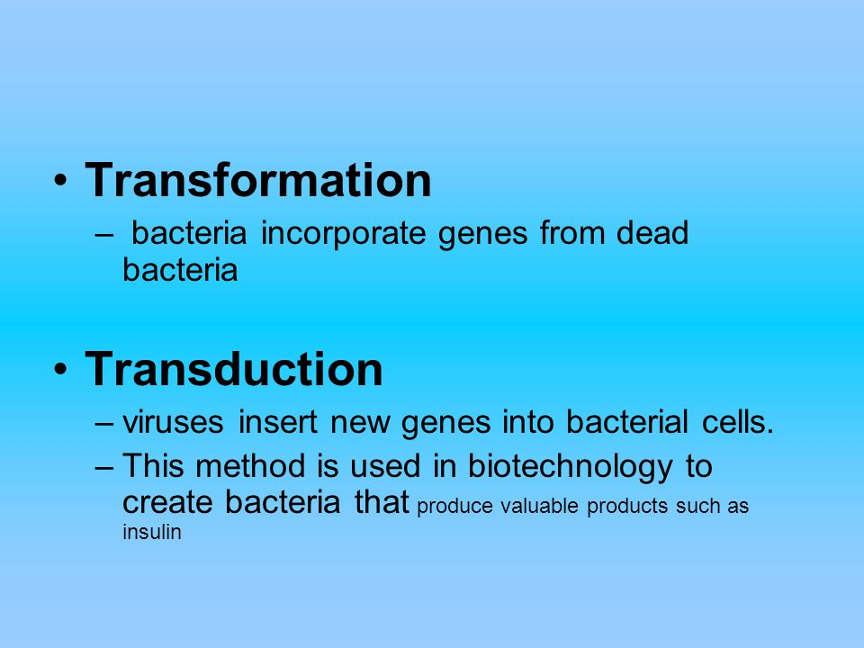 Transformation – bacteria incorporate genes from dead bacteria Transduction –viruses insert new genes into bacterial cells. –This method is used in bi
