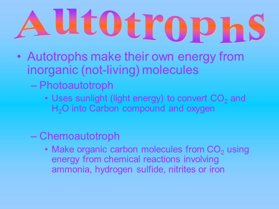Autotrophs make their own energy from inorganic (not-living) molecules –Photoautotroph Uses sunlight (light energy) to convert CO 2 and H 2 O into Carbon compound and oxygen –Chemoautotroph Make organic carbon molecules from CO 2 using energy from chemical reactions involving ammonia, hydrogen sulfide, nitrites or iron