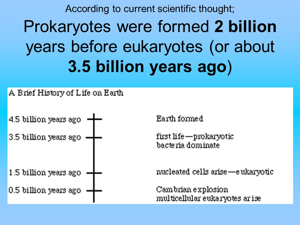 According to current scientific thought; Prokaryotes were formed 2 billion years before eukaryotes (or about 3.5 billion years ago)