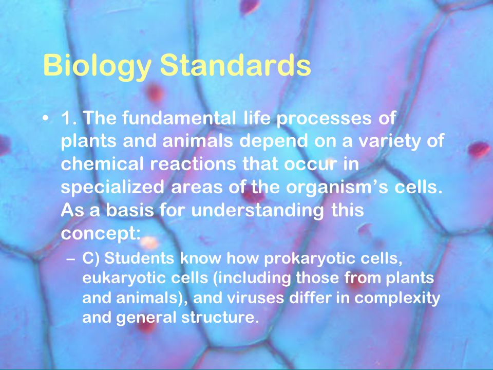 Biology Standards 1. The fundamental life processes of plants and animals depend on a variety of chemical reactions that occur in specialized areas of