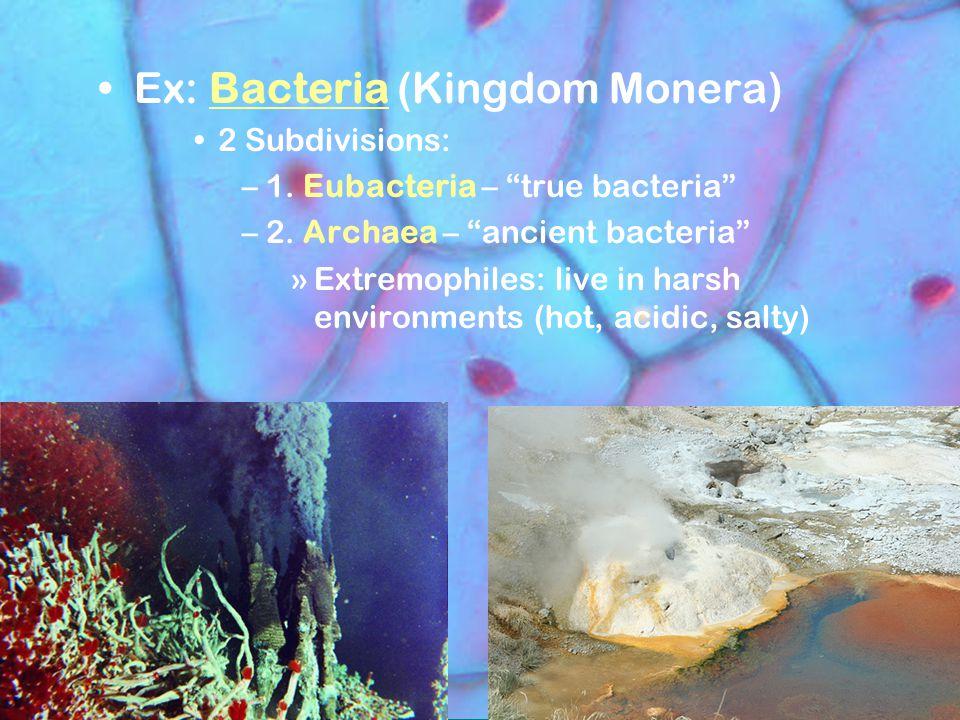 "Ex: Bacteria (Kingdom Monera) 2 Subdivisions: –1. Eubacteria – ""true bacteria"" –2. Archaea – ""ancient bacteria"" »Extremophiles: live in harsh environm"