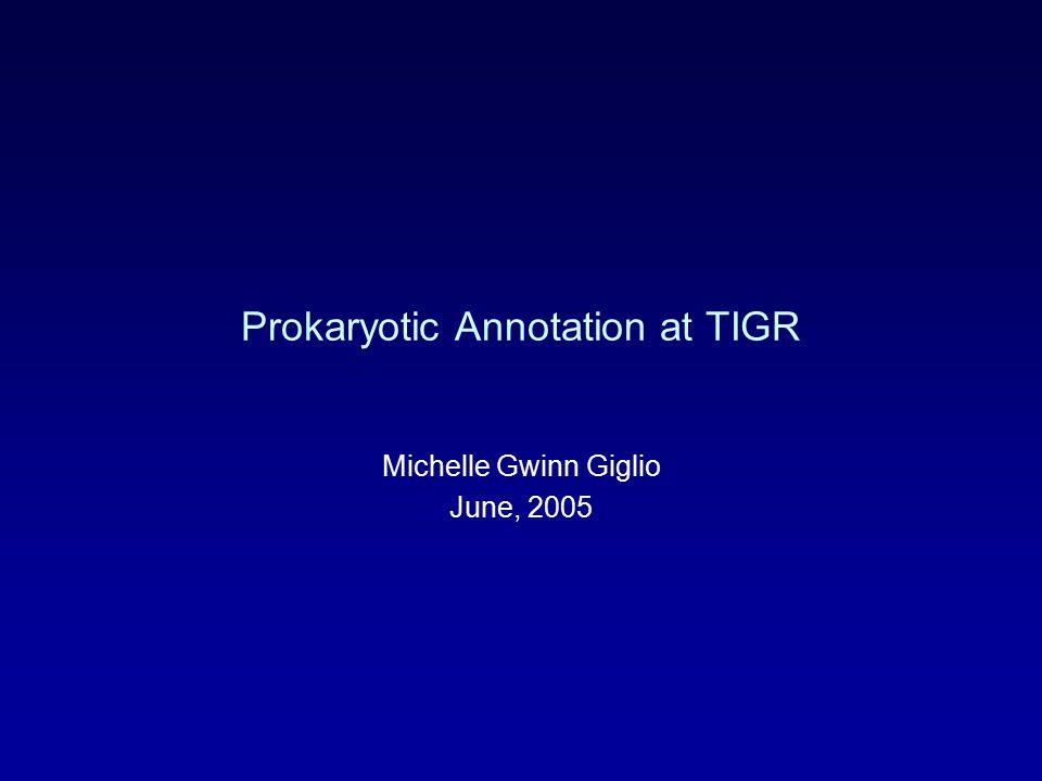 Prokaryotic Annotation at TIGR Michelle Gwinn Giglio June, 2005