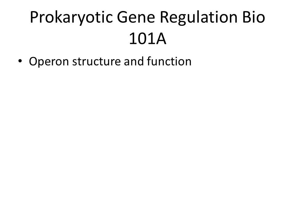 Prokaryotic Gene Regulation Bio 101A Operon structure and function