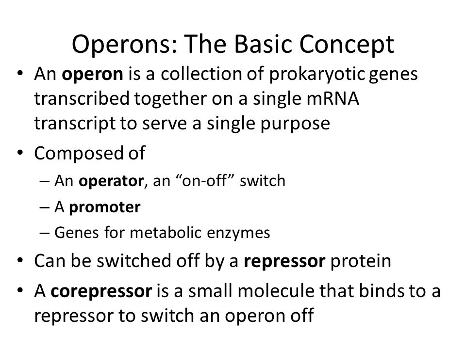 Operons: The Basic Concept An operon is a collection of prokaryotic genes transcribed together on a single mRNA transcript to serve a single purpose C