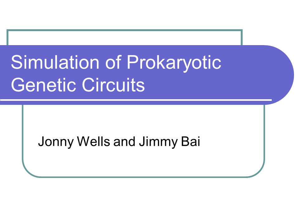 Simulation of Prokaryotic Genetic Circuits Jonny Wells and Jimmy Bai