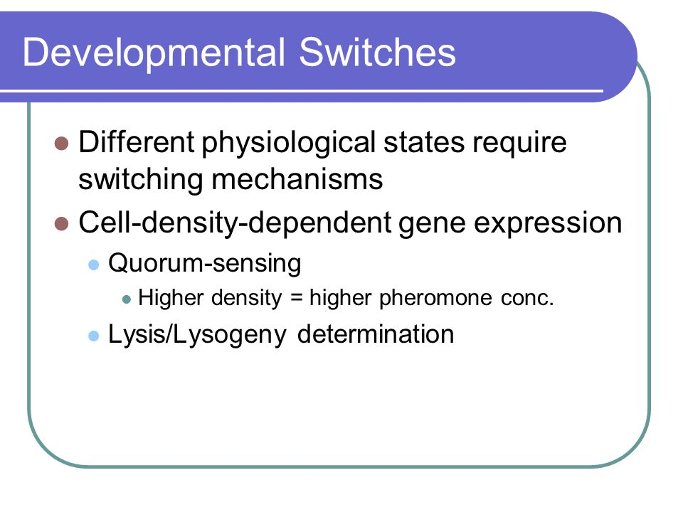 Developmental Switches Different physiological states require switching mechanisms Cell-density-dependent gene expression Quorum-sensing Higher density = higher pheromone conc.
