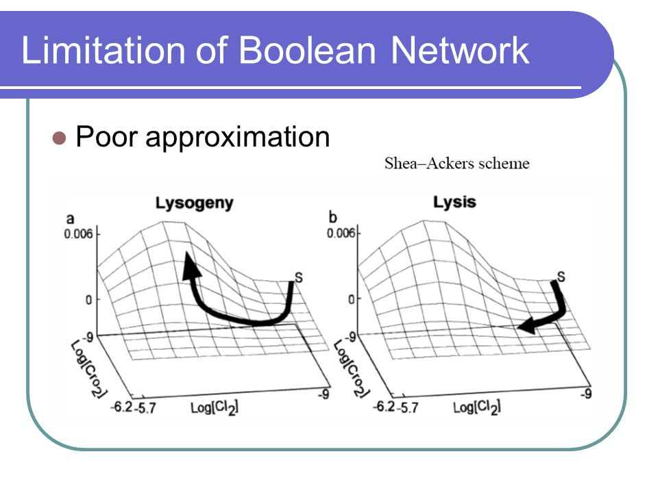 Limitation of Boolean Network Poor approximation