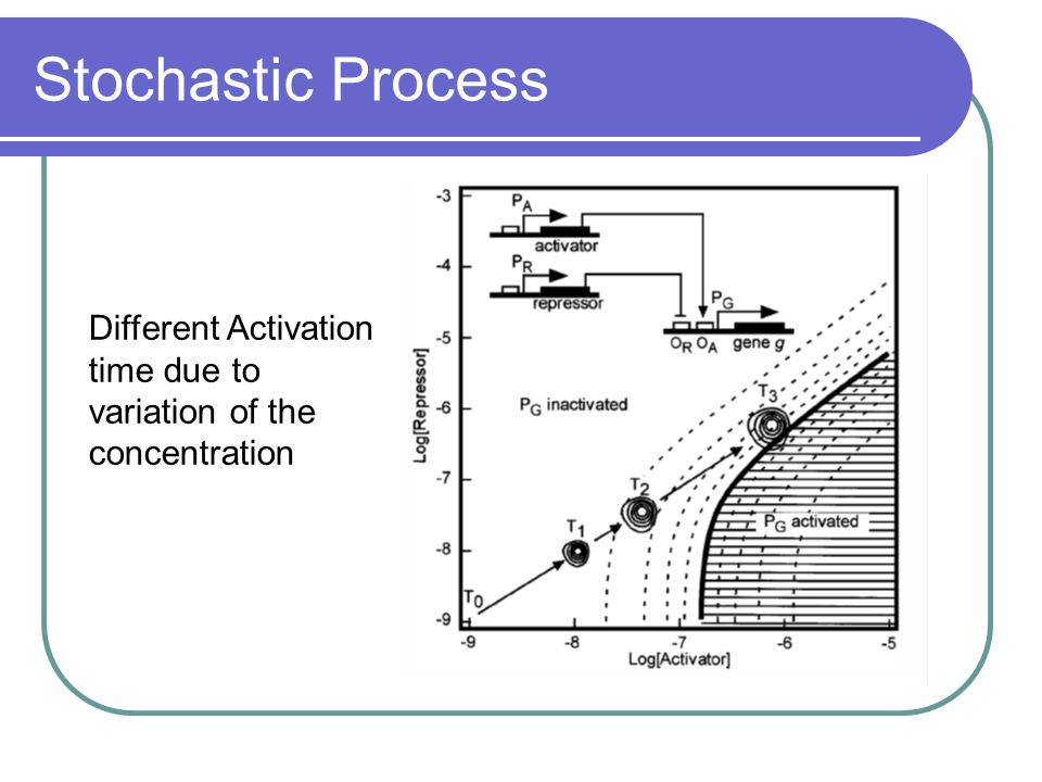 Stochastic Process Different Activation time due to variation of the concentration