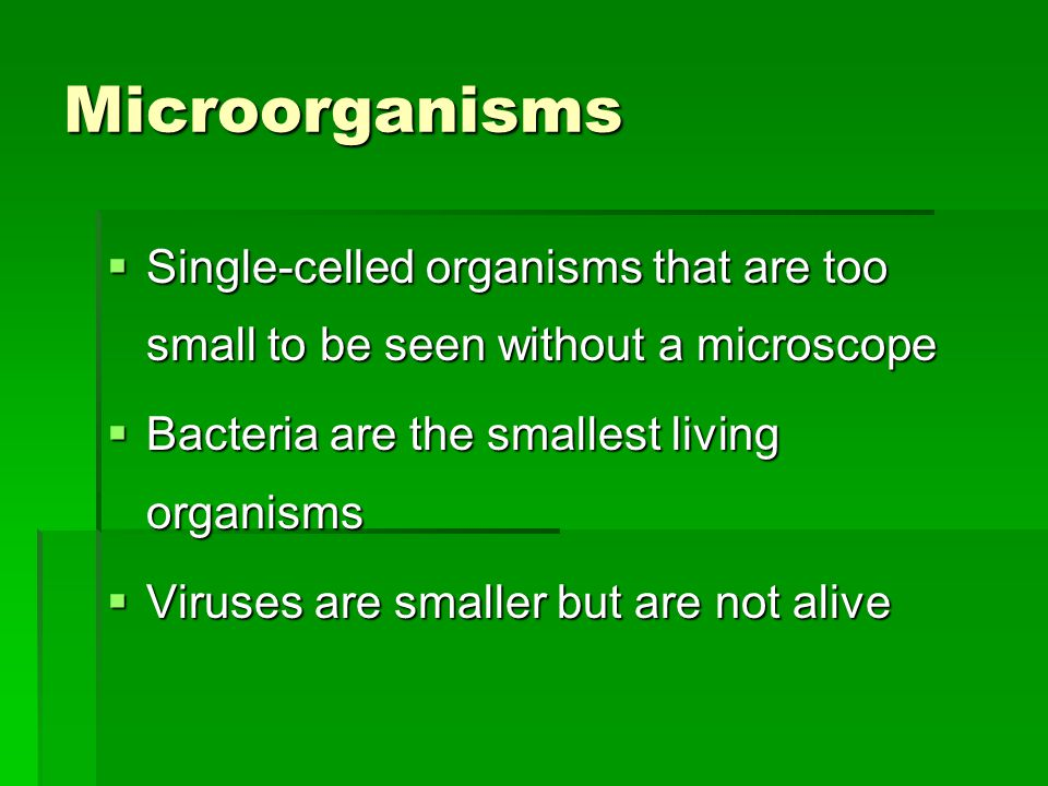 Microorganisms  Single-celled organisms that are too small to be seen without a microscope  Bacteria are the smallest living organisms  Viruses are smaller but are not alive