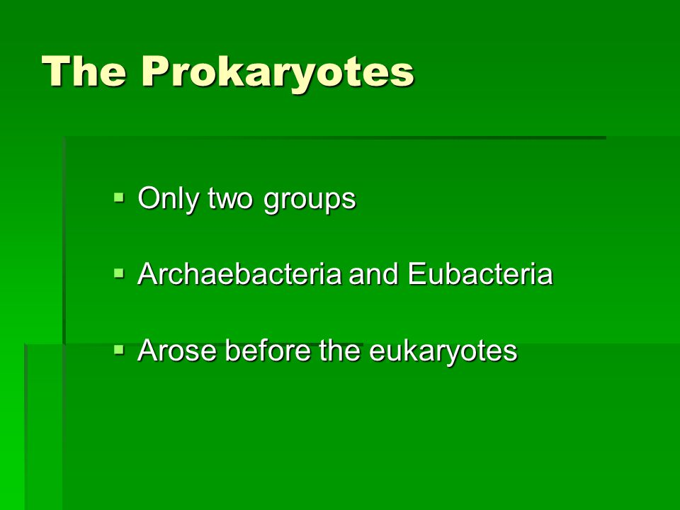 The Prokaryotes  Only two groups  Archaebacteria and Eubacteria  Arose before the eukaryotes