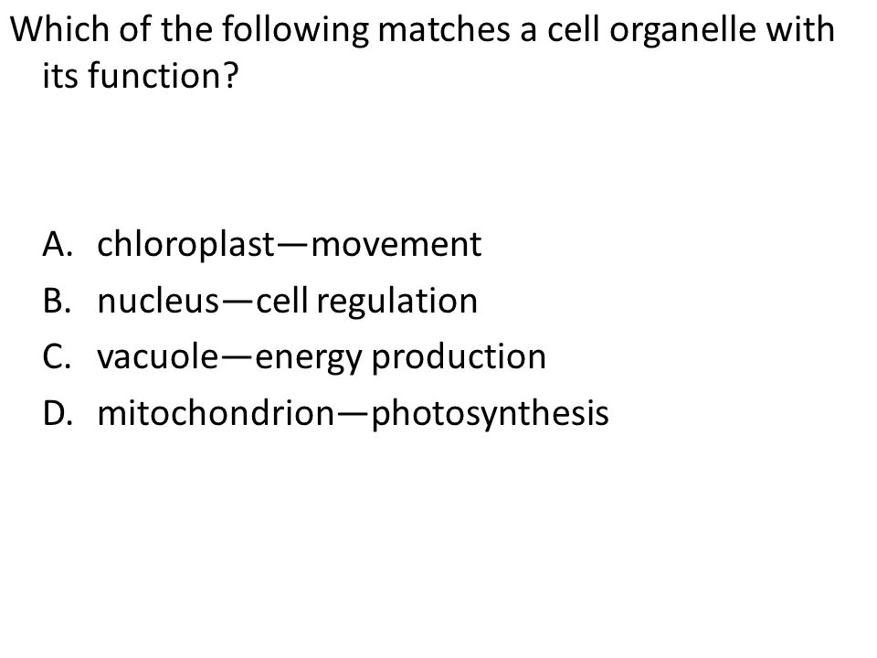 Which of the following matches a cell organelle with its function? A.chloroplast—movement B.nucleus—cell regulation C.vacuole—energy production D.mito