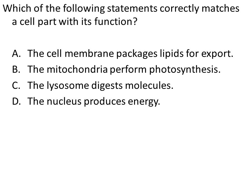 Which of the following statements correctly matches a cell part with its function? A.The cell membrane packages lipids for export. B.The mitochondria