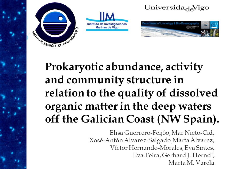 Prokaryotic abundance, activity and community structure in relation to the quality of dissolved organic matter in the deep waters off the Galician Coast (NW Spain).