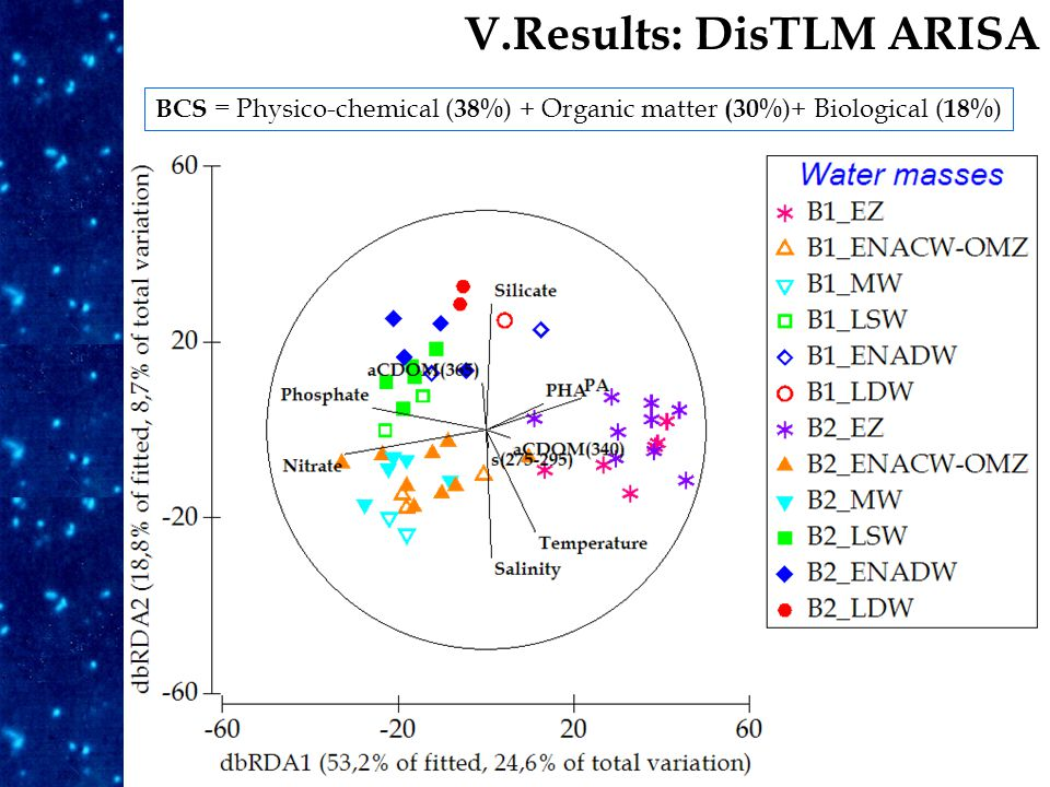 Results V.Results: DisTLM ARISA BCS = Physico-chemical ( 38% ) + Organic matter (30% )+ Biological ( 18% )