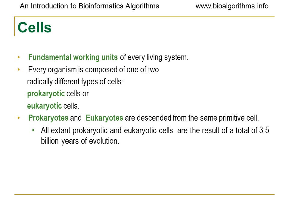 An Introduction to Bioinformatics Algorithmswww.bioalgorithms.info Cells Chemical composition -by weight 70% water 7% small molecules salts Lipids amino acids nucleotides 23% macromolecules Proteins Polysaccharides lipids