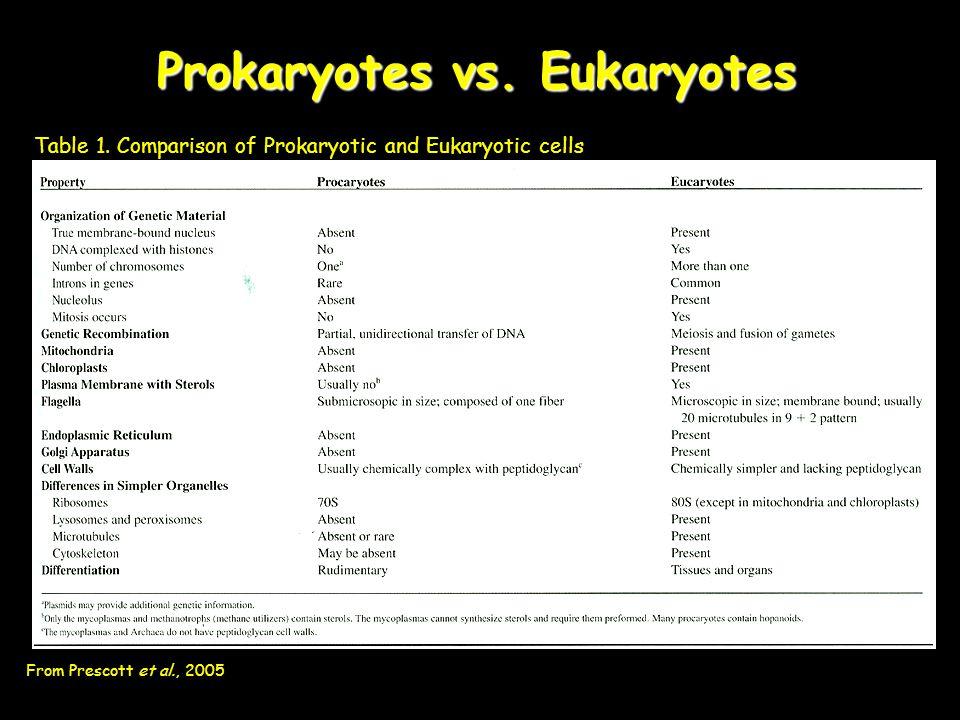 Prokaryotes vs.Eukaryotes Figure 4. Comparison of Prokaryotic and Eukaryotic cell structure.