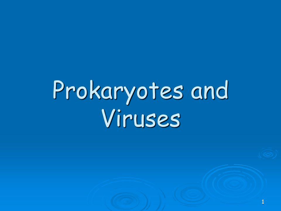 Prokaryotes and Viruses 1