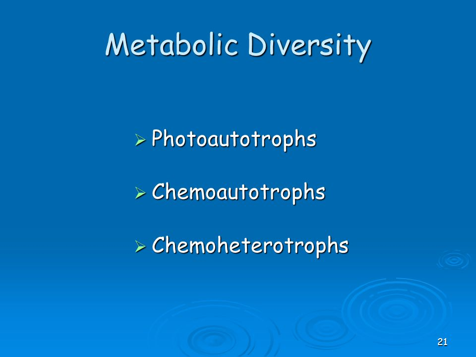 Metabolic Diversity  Photoautotrophs  Chemoautotrophs  Chemoheterotrophs 21
