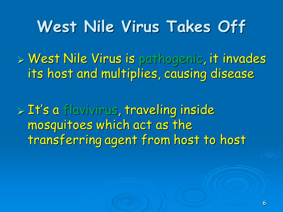 West Nile Virus is pathogenic, it invades its host and multiplies, causing disease  It's a flavivirus, traveling inside mosquitoes which act as the