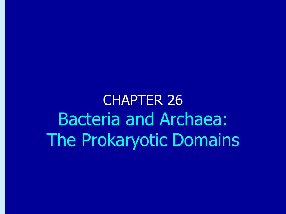 Chapter 26: Bacteria and Archaea: the Prokaryotic Domains CHAPTER 26 Bacteria and Archaea: The Prokaryotic Domains