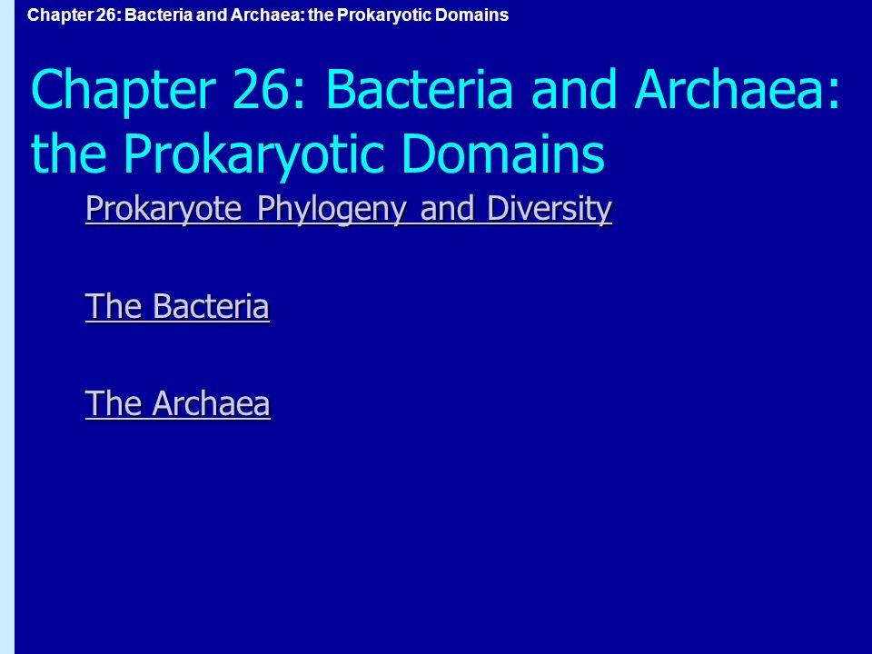 Chapter 26: Bacteria and Archaea: the Prokaryotic Domains Prokaryote Phylogeny and Diversity Prokaryote Phylogeny and Diversity The Bacteria The Bacteria The Archaea The Archaea Chapter 26: Bacteria and Archaea: the Prokaryotic Domains