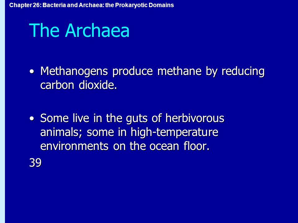 Chapter 26: Bacteria and Archaea: the Prokaryotic Domains The Archaea Methanogens produce methane by reducing carbon dioxide.Methanogens produce methane by reducing carbon dioxide.