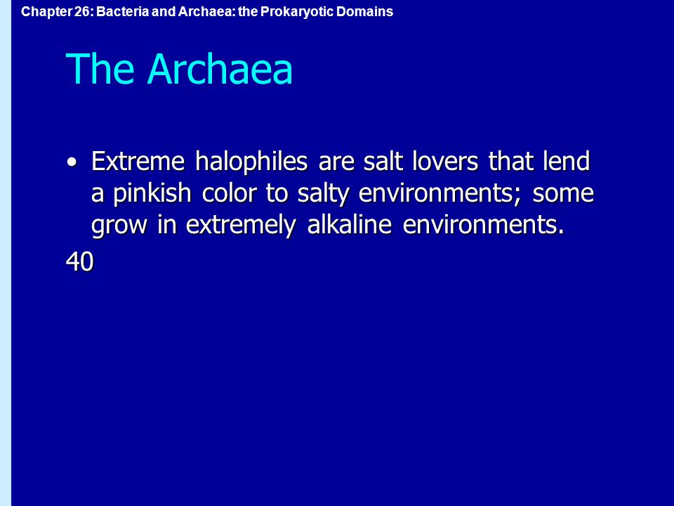 Chapter 26: Bacteria and Archaea: the Prokaryotic Domains The Archaea Extreme halophiles are salt lovers that lend a pinkish color to salty environments; some grow in extremely alkaline environments.Extreme halophiles are salt lovers that lend a pinkish color to salty environments; some grow in extremely alkaline environments.40