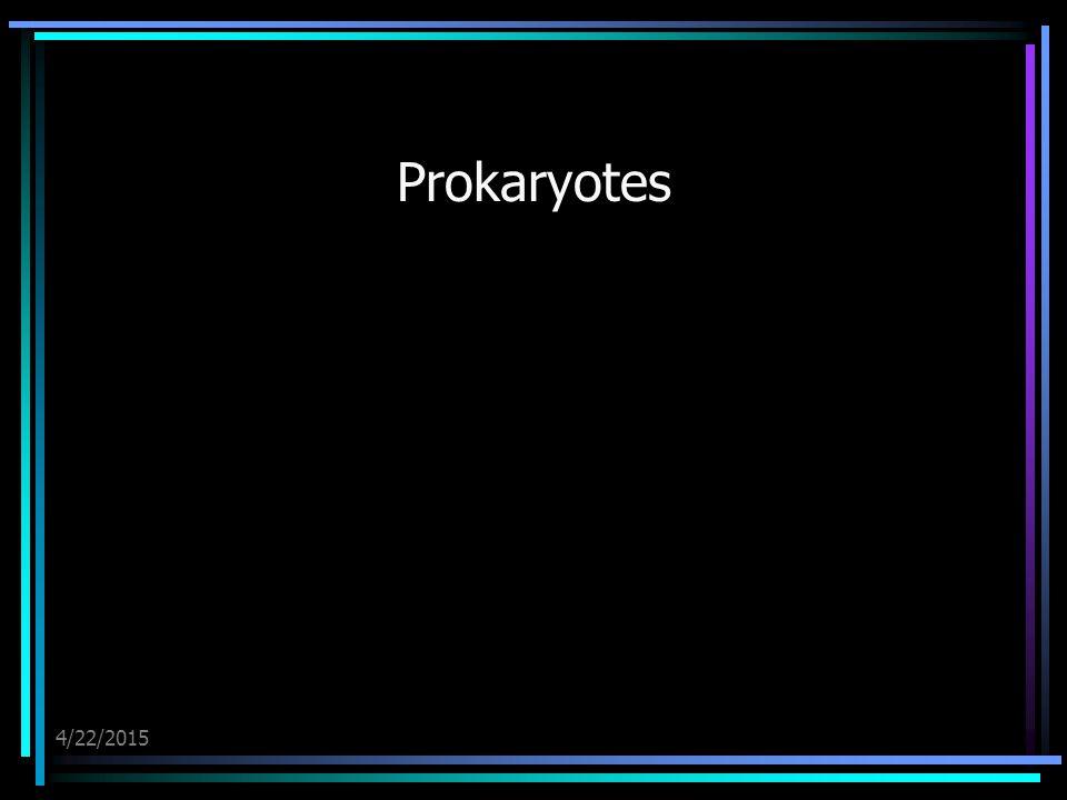 4/22/2015 Prokaryotes