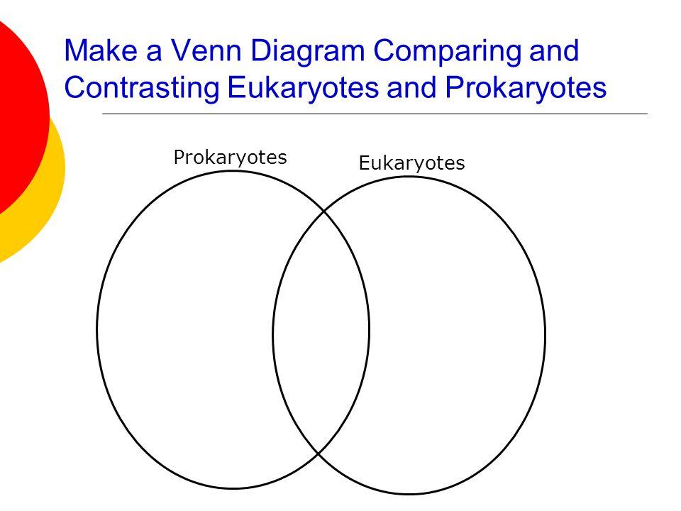 Venn Diagram Comparing Viruses And Cells Ukrandiffusion