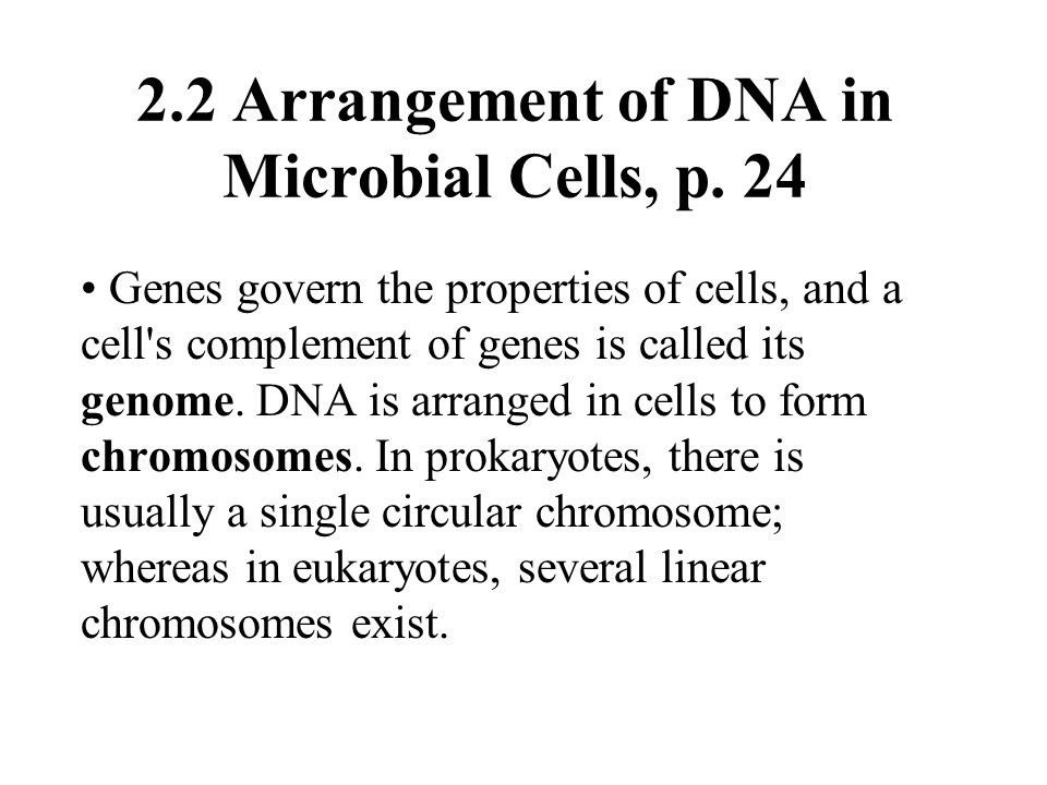 2.2 Arrangement of DNA in Microbial Cells, p. 24 Genes govern the properties of cells, and a cell's complement of genes is called its genome. DNA is a