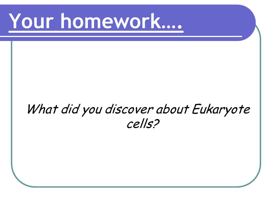 Your homework…. What did you discover about Eukaryote cells?