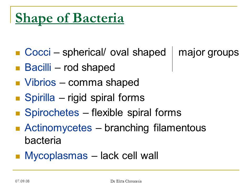 07.09.08 Dr Ekta Chourasia Additional Organelles 5.
