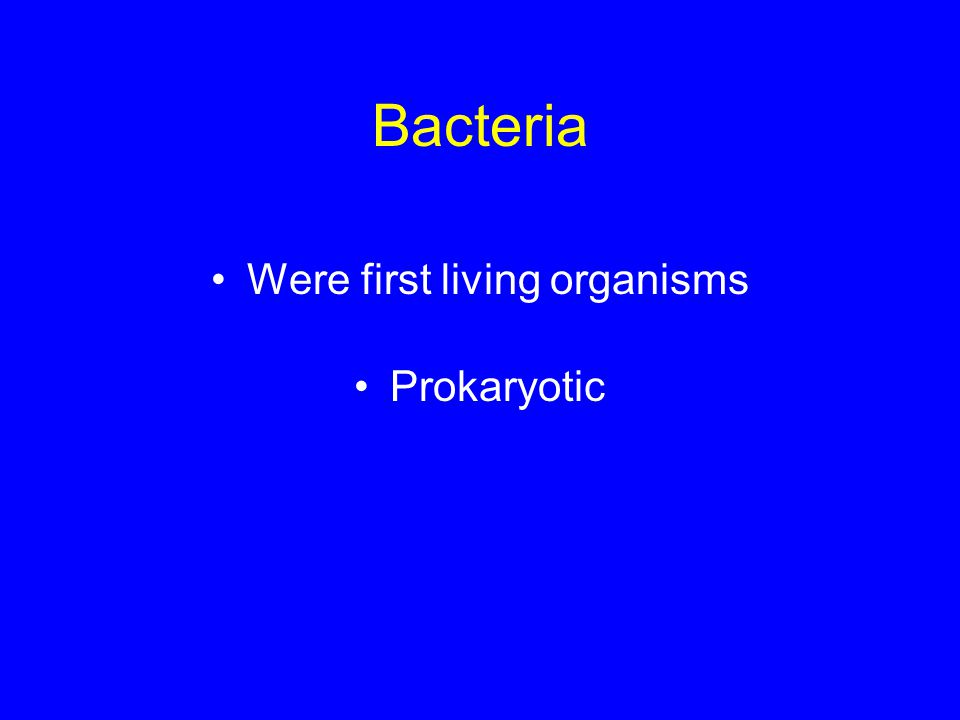 Bacteria Were first living organisms Prokaryotic