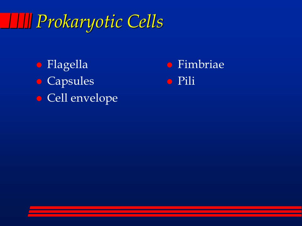 Prokaryotic Cells l Flagella l Capsules l Cell envelope l Fimbriae l Pili