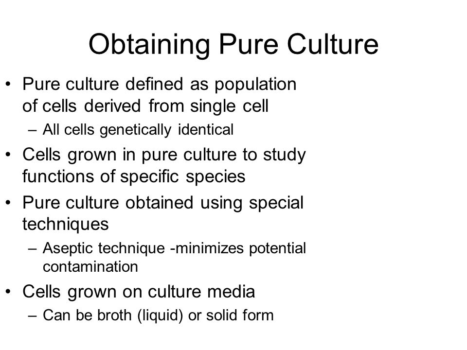 Obtaining Pure Culture Culture media can be liquid or solid –Liquid is broth media Used for growing large numbers of bacteria –Solid media is broth media with addition of agar Agar marine algae extract Liquefies at temperatures above 95°C Solidifies at 45°C –Remains solid at room temperature and body temperature –Bacteria grow in colonies on solid media surface All cells in colony descend from single cell Approximately 1 million cells produce 1 visible colony