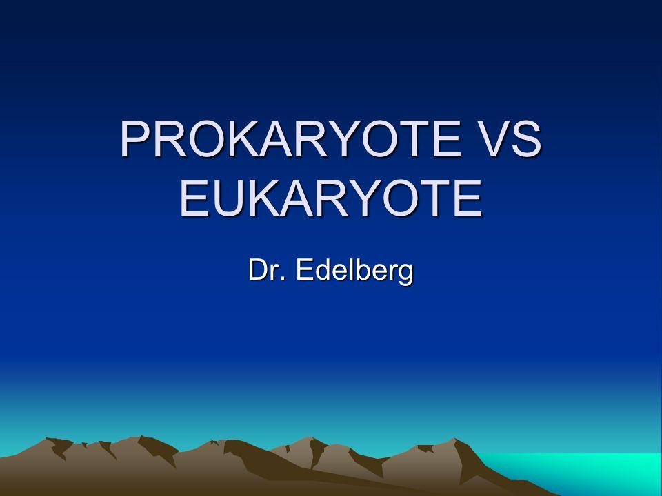 PROKARYOTE VS EUKARYOTE Dr. Edelberg