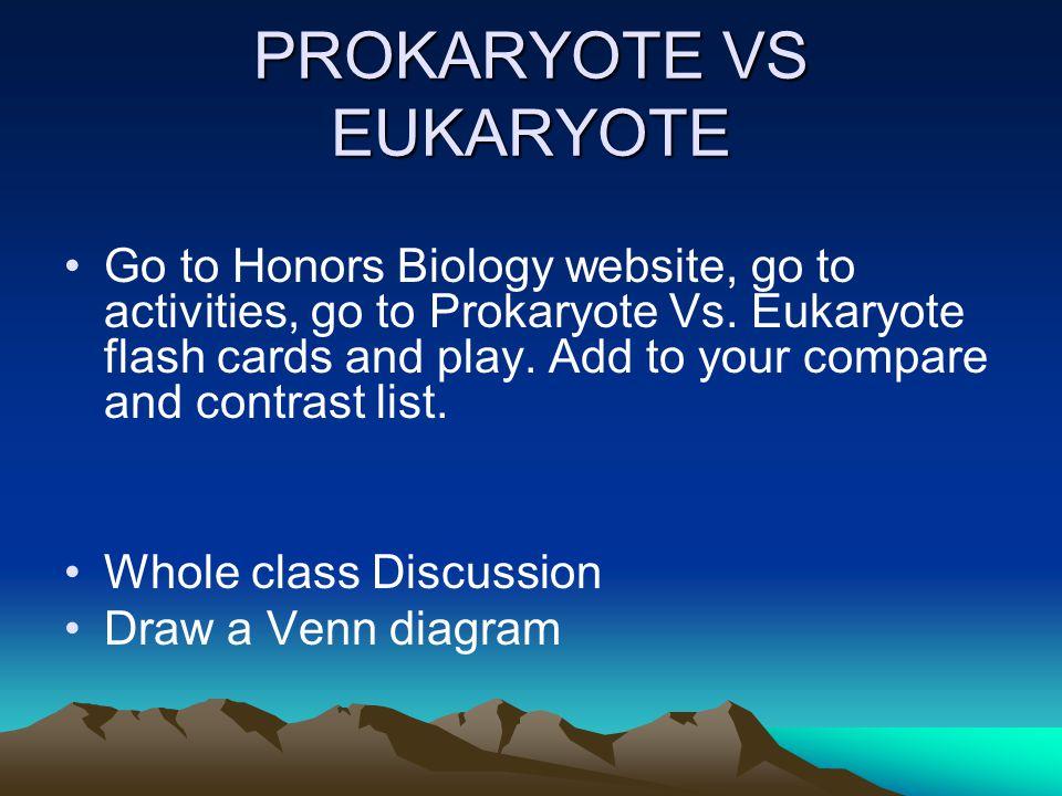 PROKARYOTE VS EUKARYOTE Go to Honors Biology website, go to activities, go to Prokaryote Vs.