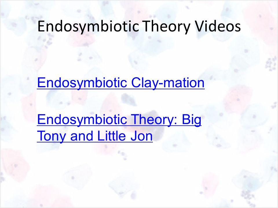 Endosymbiotic Clay-mation Endosymbiotic Theory: Big Tony and Little Jon Endosymbiotic Theory Videos
