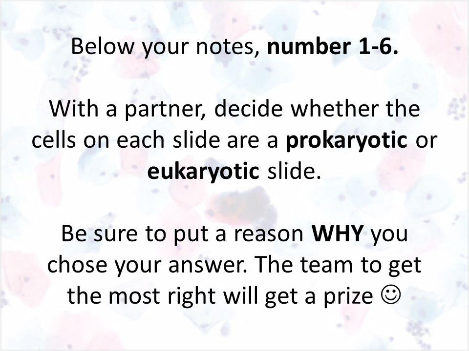 Below your notes, number 1-6.